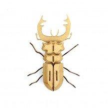 Insecte en bois et cuir - Mordicus - Agent Paper