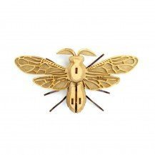 Insecte en bois et cuir - Noctambulus - Agent Paper