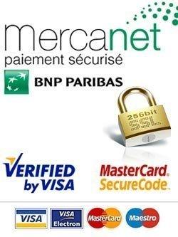 logo paiement sécurisé Mercanet BNP